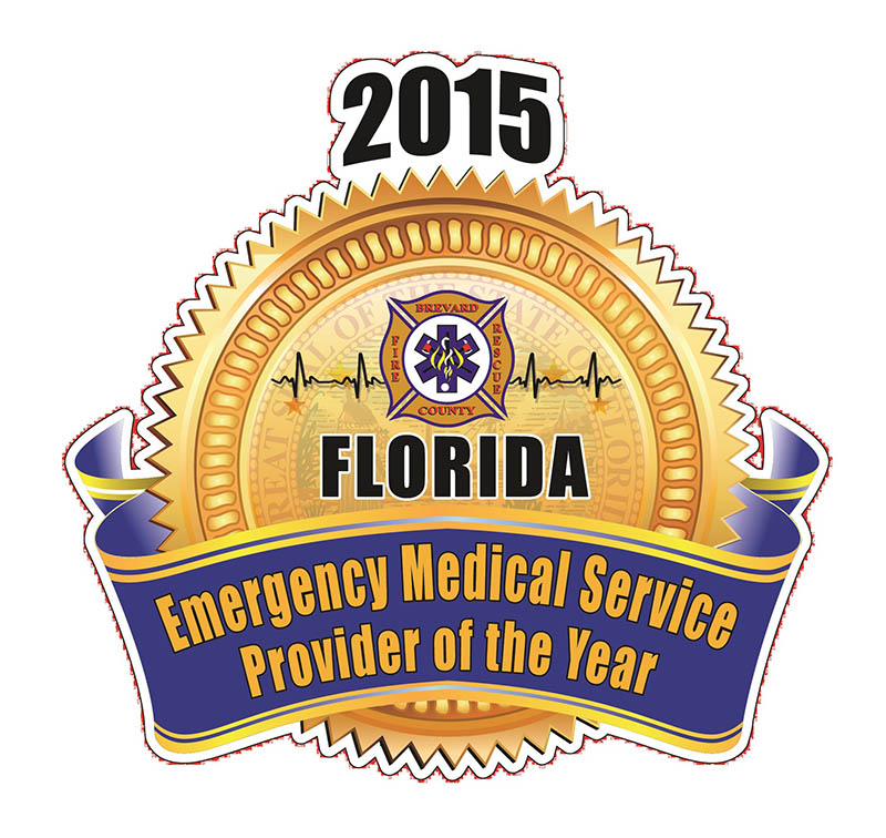 2015 provider of the year logo