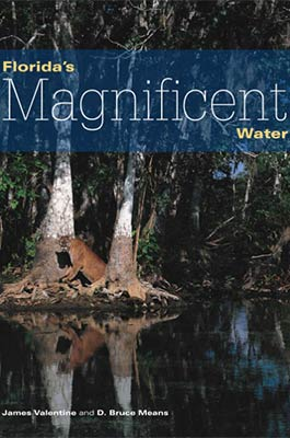 Floridas Magnificent Water Book Cover