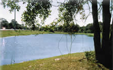 Brevard County Natural Resources Wet Detention Pond