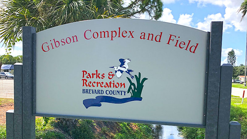 Gibson Complex and Field sign