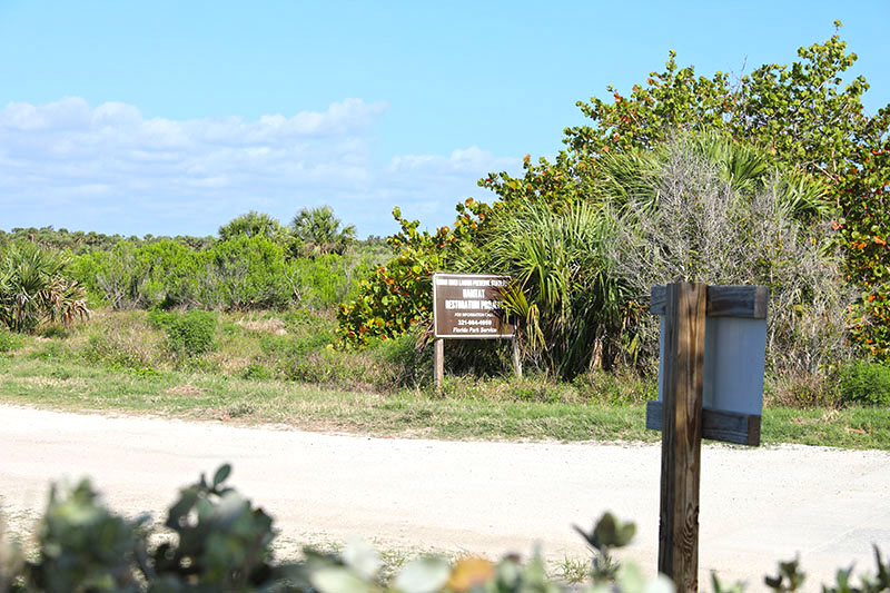 South Beach Community Park Habitat