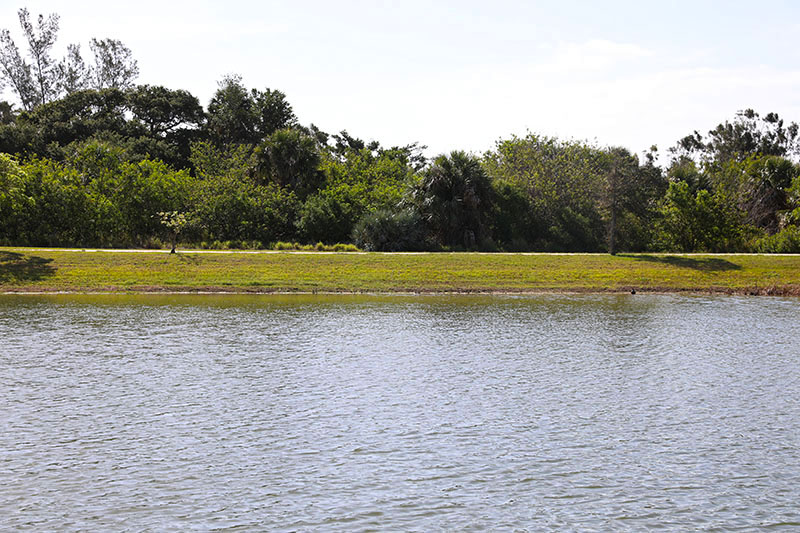 South Beach Community Park Pond